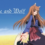 Spice And Wolf DS Screenshots